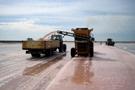 sea salt photos